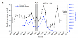 Graph showing that when whaling numbers peak, there is a peak in cortisol levels